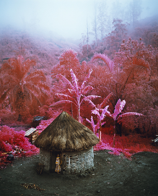 RichardMosse_comeout