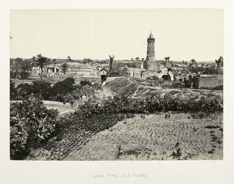 Gazaold-750x590