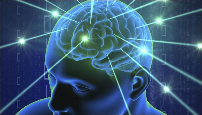 635451-brain2