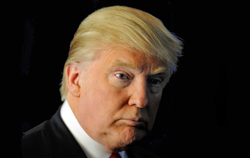 DonaldTrumpHairdo