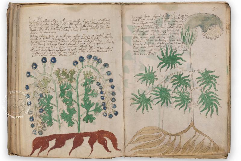 Voynich-manuscript-facsimile-edition-03